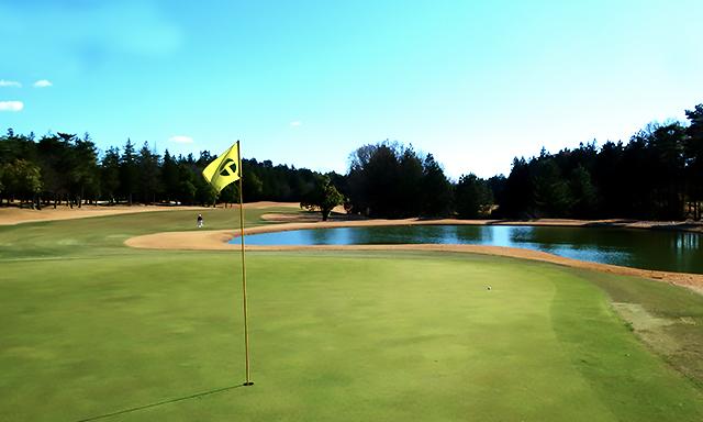 パッティンググリーンのゴルフルール